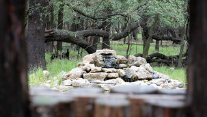 How to Begin Birding in San Antonio Parks