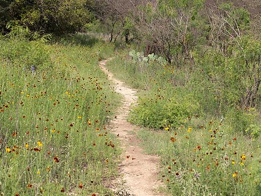 Four Seasons in Mud Creek Park
