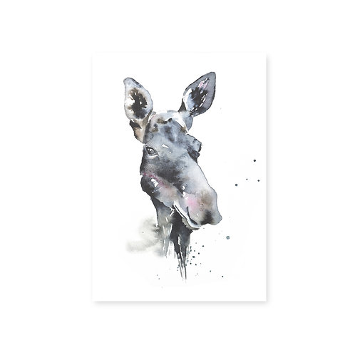 Ester Visual Moose postcard 4 x 6