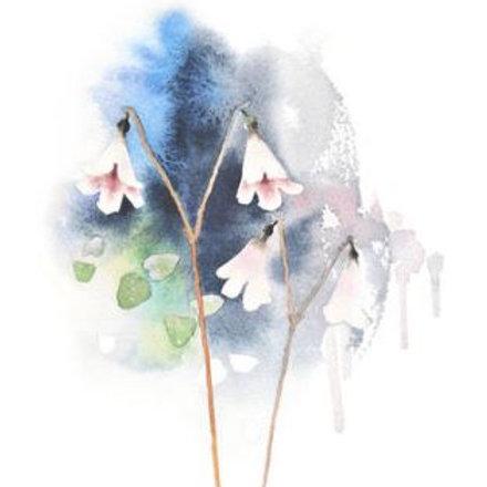 Ester Visual Twin Flower postcard 4 x 6