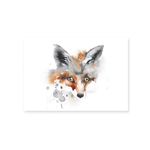 Ester Visual Fox postcard 4 x 6