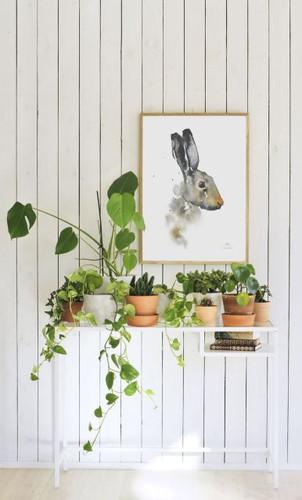 Brown Hare print