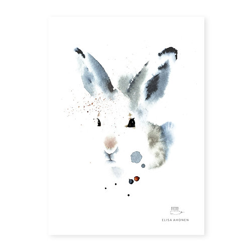 "Ester Visual WHITE HARE print (8.3"" X 11.7"")"