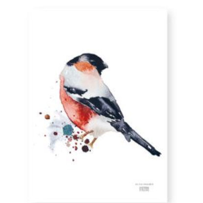 "Ester Visual BULLFINCH print (8.3"" X 11.7"")"