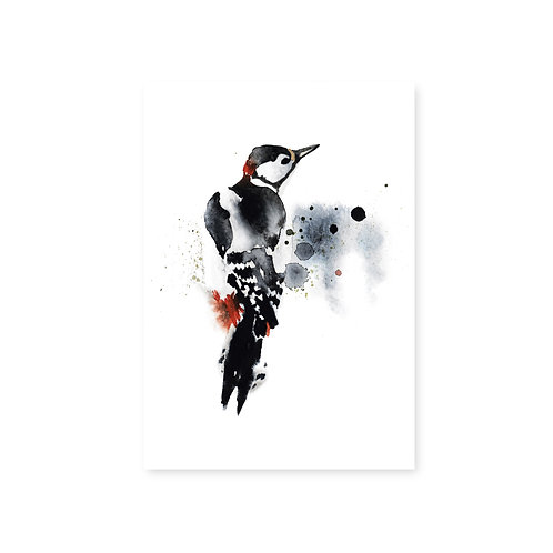 Ester Visual Woodpecker postcard 4 x 6