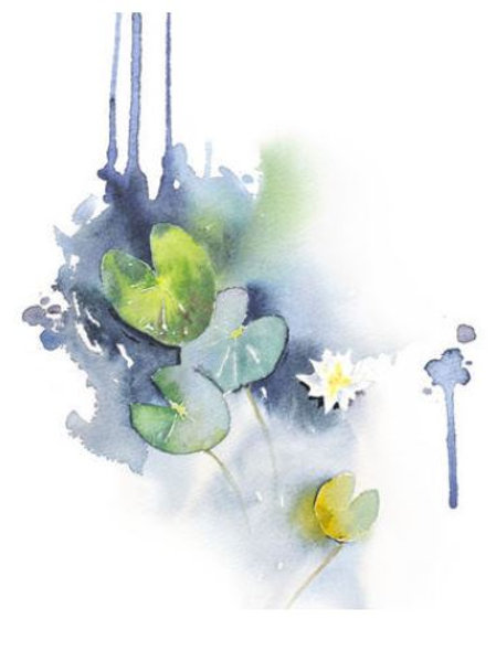 """Ester Visual WATER LILY print (20"""" X 28"""")"""