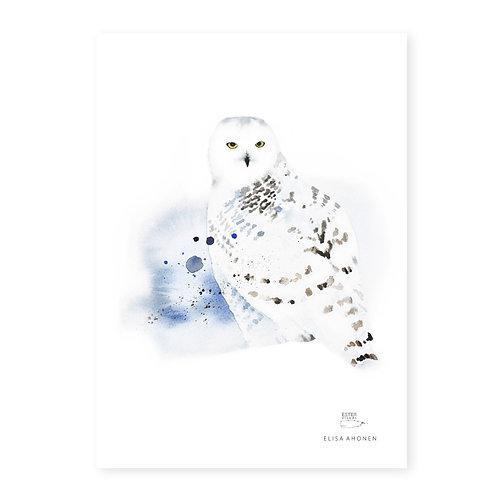 "Ester Visual SNOWY OWL  print (8.3"" X 11.7"")"
