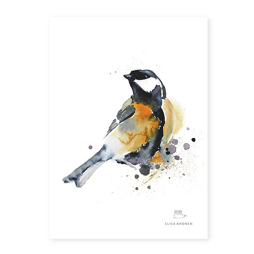 "Ester Visual GREAT TIT print (8.3"" X 11.7"")"