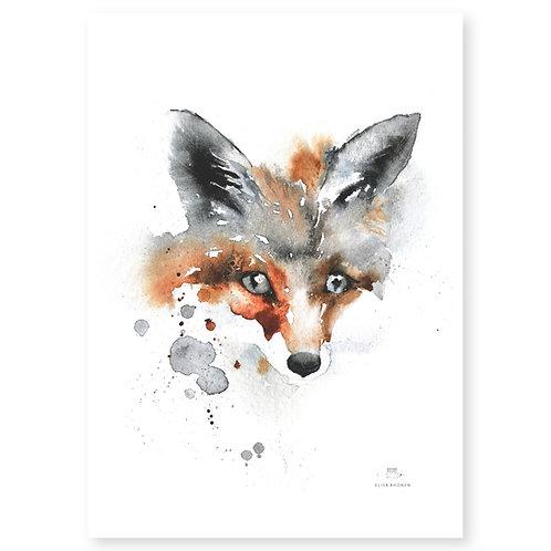 "Ester Visual FOX print (20"" X 28"")"