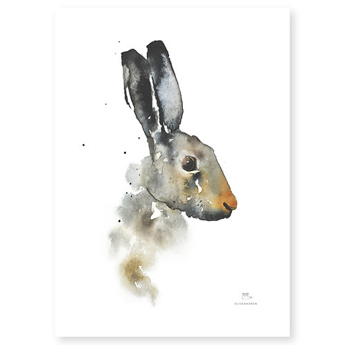 "Ester Visual BROWN HARE print (20"" X 28"")"