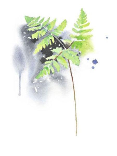 "Ester Visual OAK FERN print (20"" X 28"")"