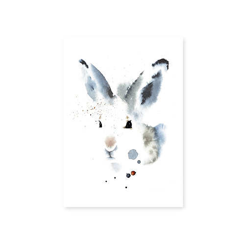 Ester Visual White Hare postcard 4 x 6