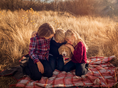 Family Photo Session in Police Point Park, Medicine Hat | Top Ten Favs