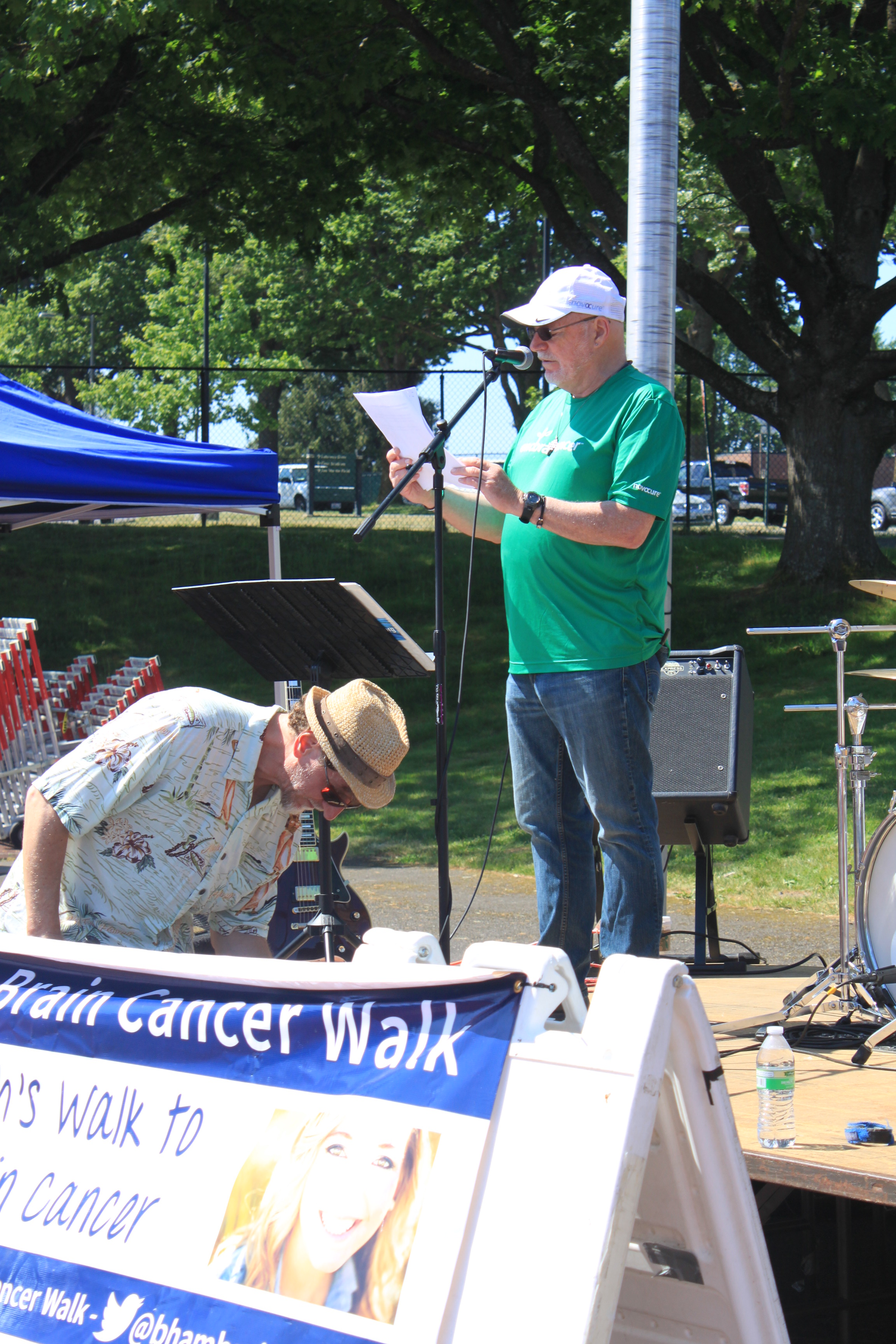 2015 Bham Brain CA Walk (1)