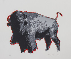 Bison (1st State)
