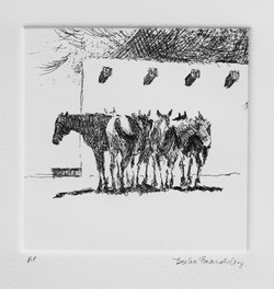Six horses with wall