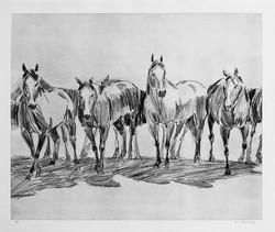 7 caballos.
