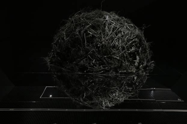 Root System, Askhat Akhmedyarov