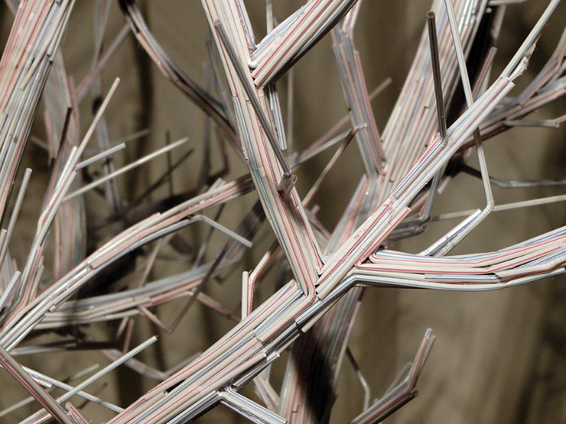 Straw branch small.jpg.opt826x619o0,0s826x619