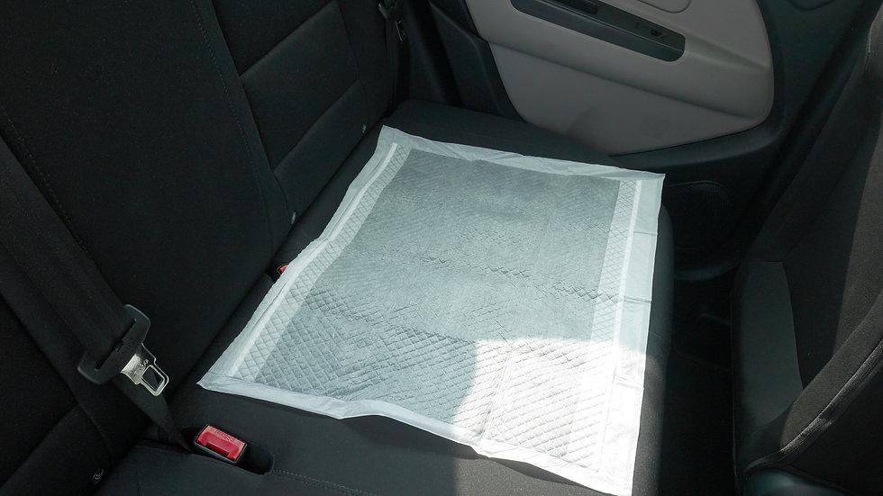 MPP_5 Protecting Car Seats.jpg