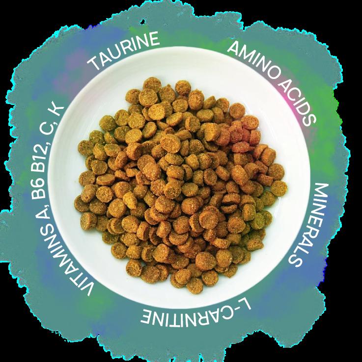 P_Bowl Nutrient.png