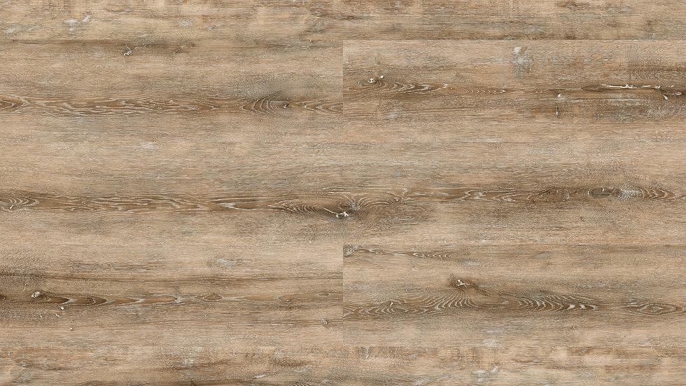 504 Rustic Oak
