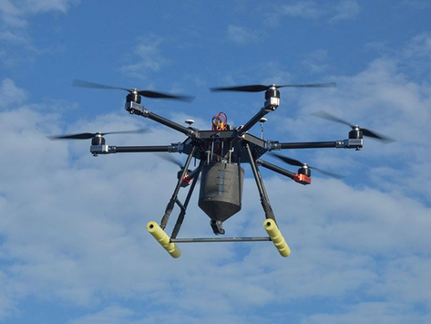 Drones used in fight against invasive rats in the Galapagos Islands