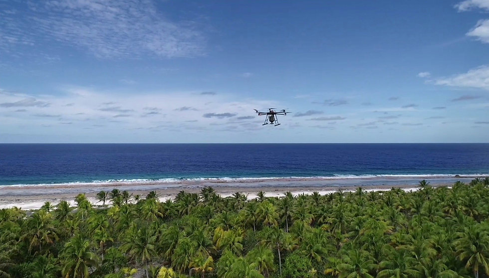 Drone UAV aerial baiting conservation rodent control
