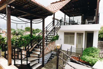 Rooftop, view, plants