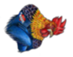 Rooster_coloredjpg.png