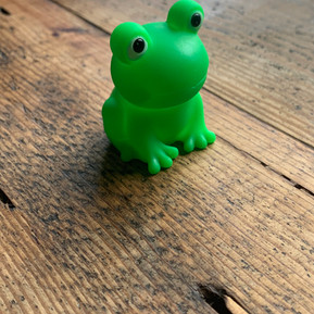 Squeaky frog