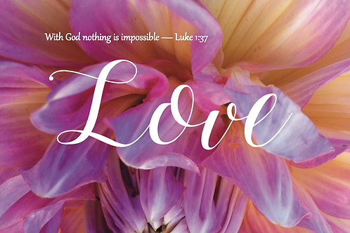 Embrace - Love