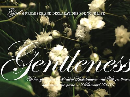 Fruits Of The Spirit - Gentlenes