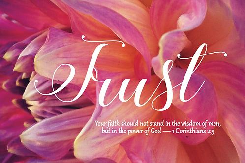 Embrace - Trust