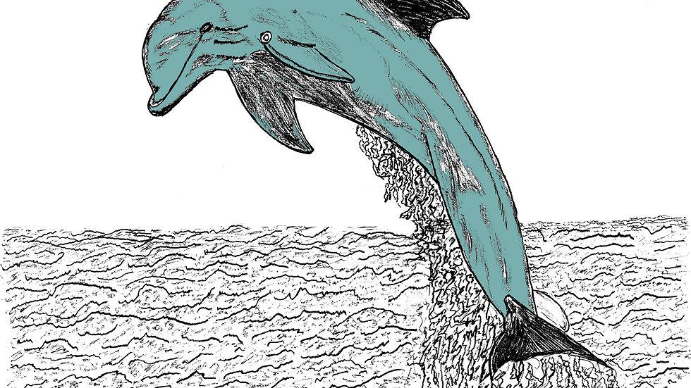 dolphin,Framed wall decor