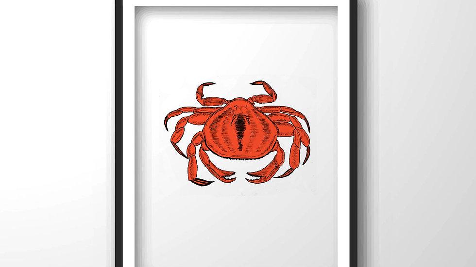 crab,Framed wall decor