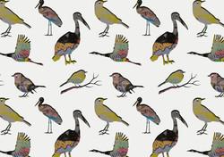 design birdie 2.jpg