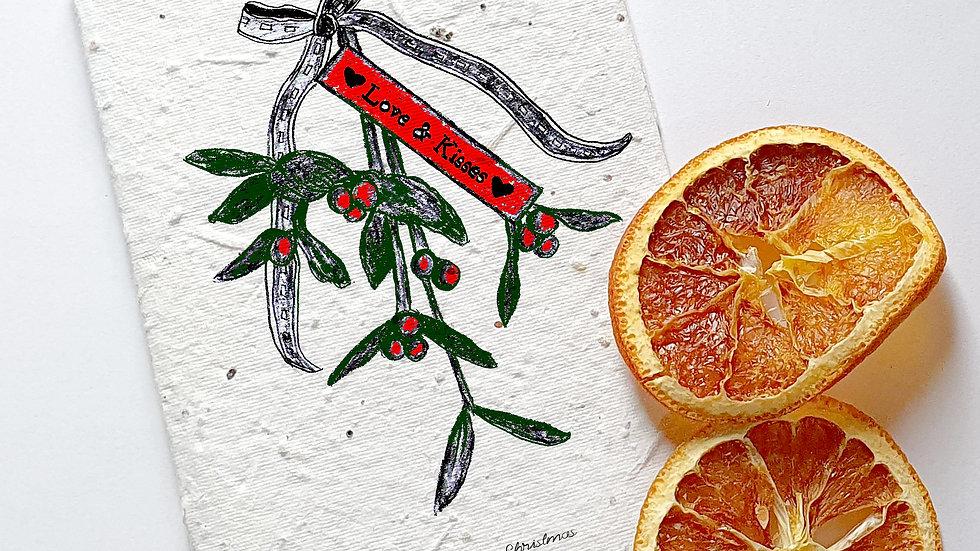 seed embed plantable greeting card, mistletoe