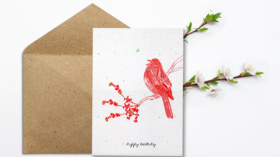 Seed embed plantable greeting card-Song Sparrow