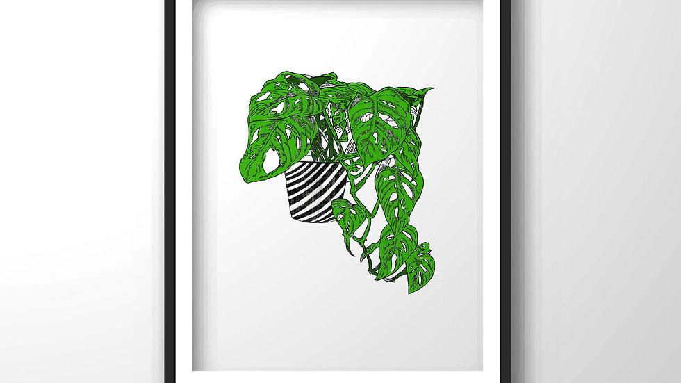 plant,Framed wall decor