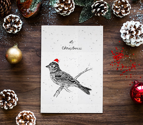 seed embed greeting card