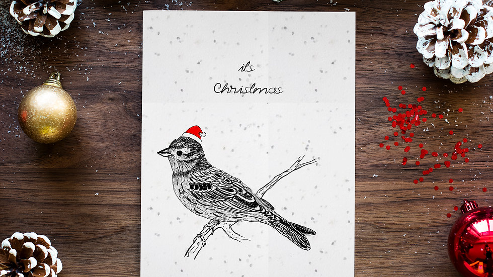 seed embed plantable greeting card ,sparrow 1