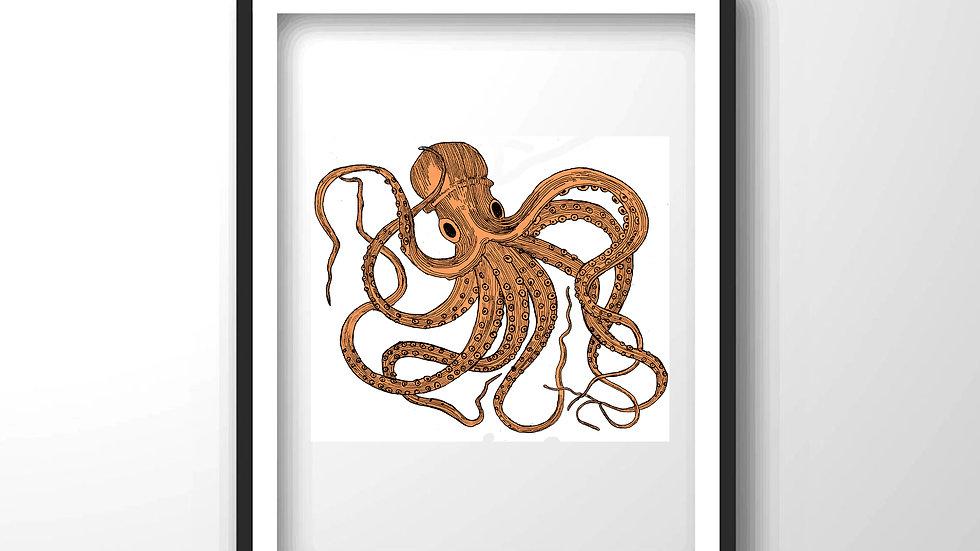 octopus,Framed wall decor