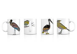 wilko birds final .jpg