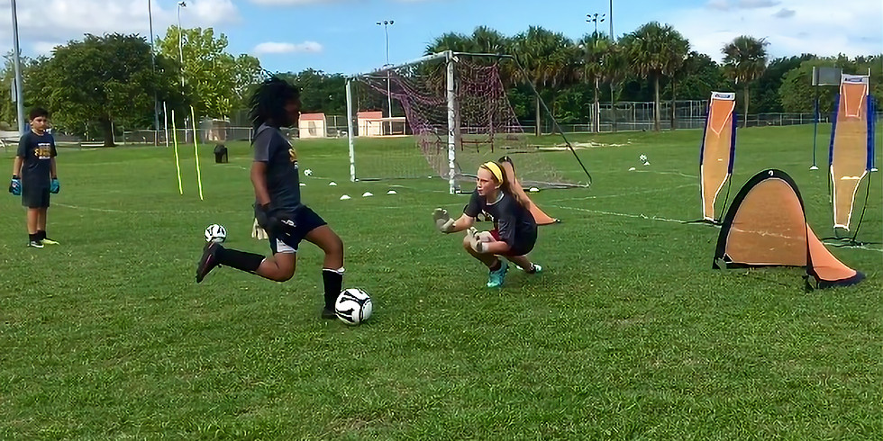 Goalkeeper Group Training