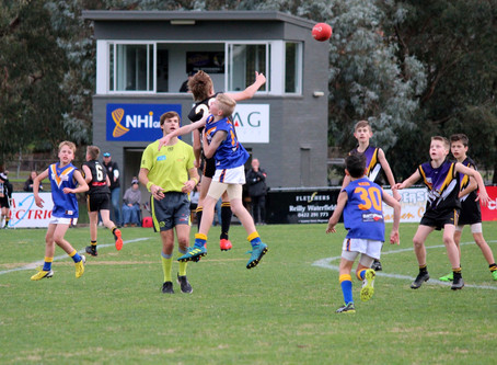 Round 6 Match Report - Jets U12 vs Norwood