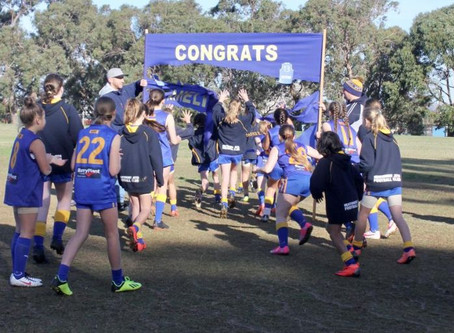 Round 6 Match Report - Jets U12 Girls vs Ferntree Gully