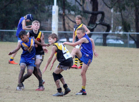 Round 11 Match Report - Jets U12 vs Mitcham