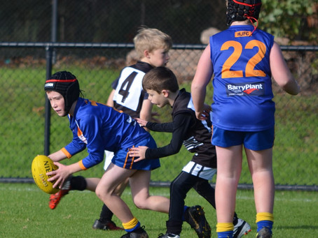 Round 8 Match Report - Jets U9 vs Waverley Rovers