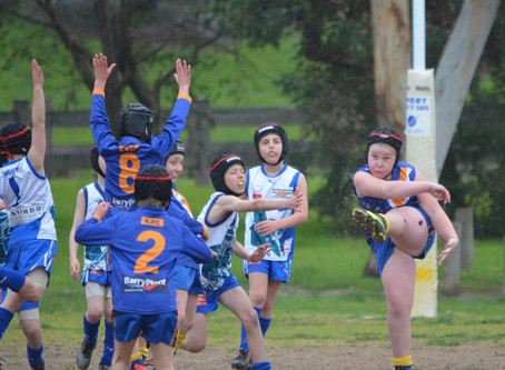 Round 11 Match Report - Jets U9 vs Rowville